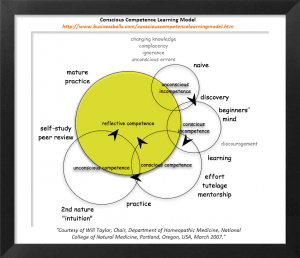 Will Tayor's Competency Matrix