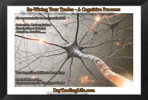 Re-Wiring-A-Trader-Mind